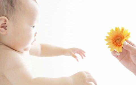 4大试管常见失败环节 俄罗斯试管婴儿前该好好了解