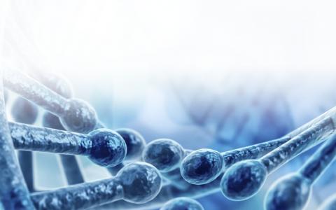 遗传性乳腺癌和卵巢癌小组