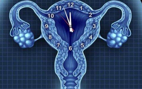 做试管婴儿会导致卵巢早衰?