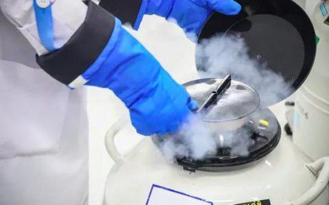 俄罗斯试管婴儿冻胚移植,在成功率上会有什么影响?